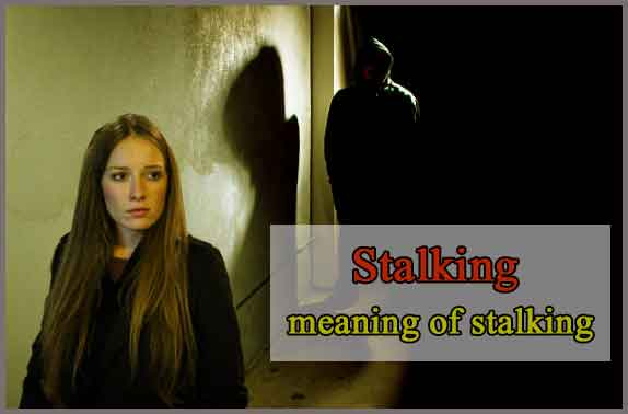 What is Stalking Meaning? Stalker Behavior, Types, Prevention