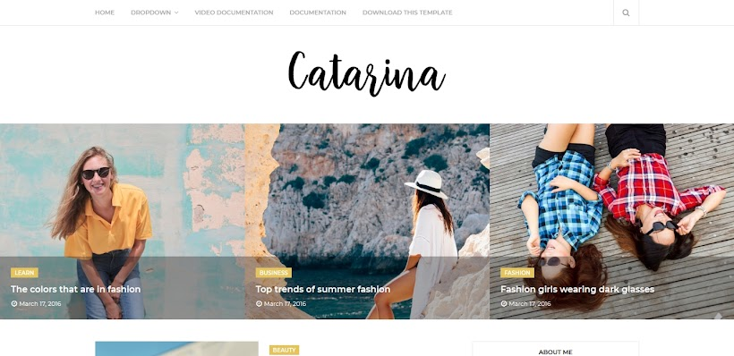 Catarina Free Blogger Template