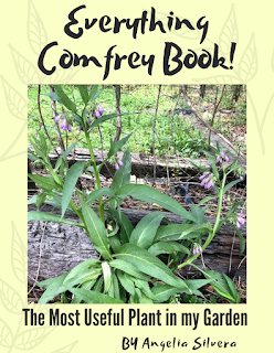 Comfrey is the most used plant in my her garden! In this book I tell you have to grow, propagate and harvest comfrey! I explain its uses and give you recipes to create for your own use! I also go over what livestock I've fed it too and how to fertilize your garden with it! Easy to follow and understand! #comfrey #growingcomfrey