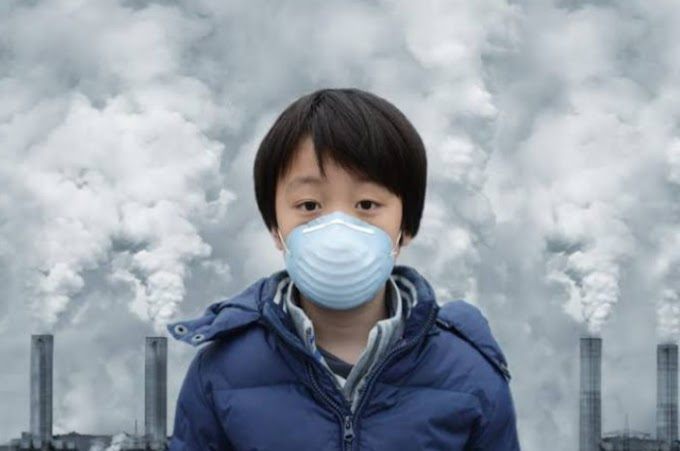 What is pollution ?