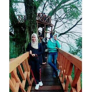 Rumah Pohon Curug Ciherang Jonggol Bogor