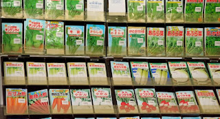 Rows of seed packets