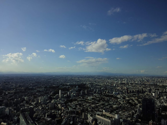 Top of  SHIBUYA SKY