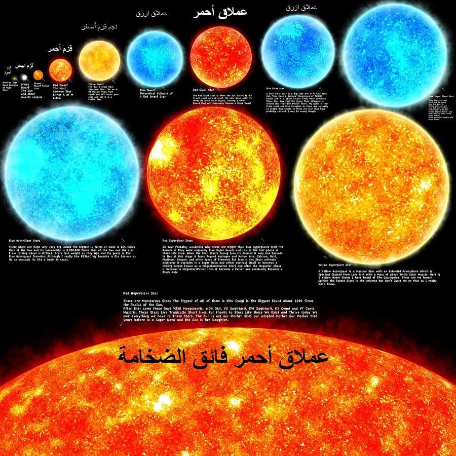 انواع و اسماء النجوم بالصور