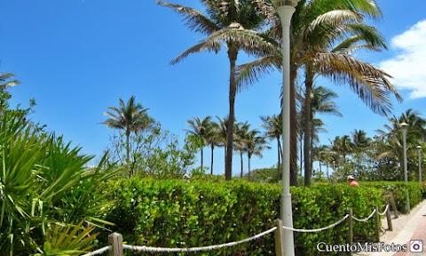 Miami - Qué ropa usar en Primavera y Verano