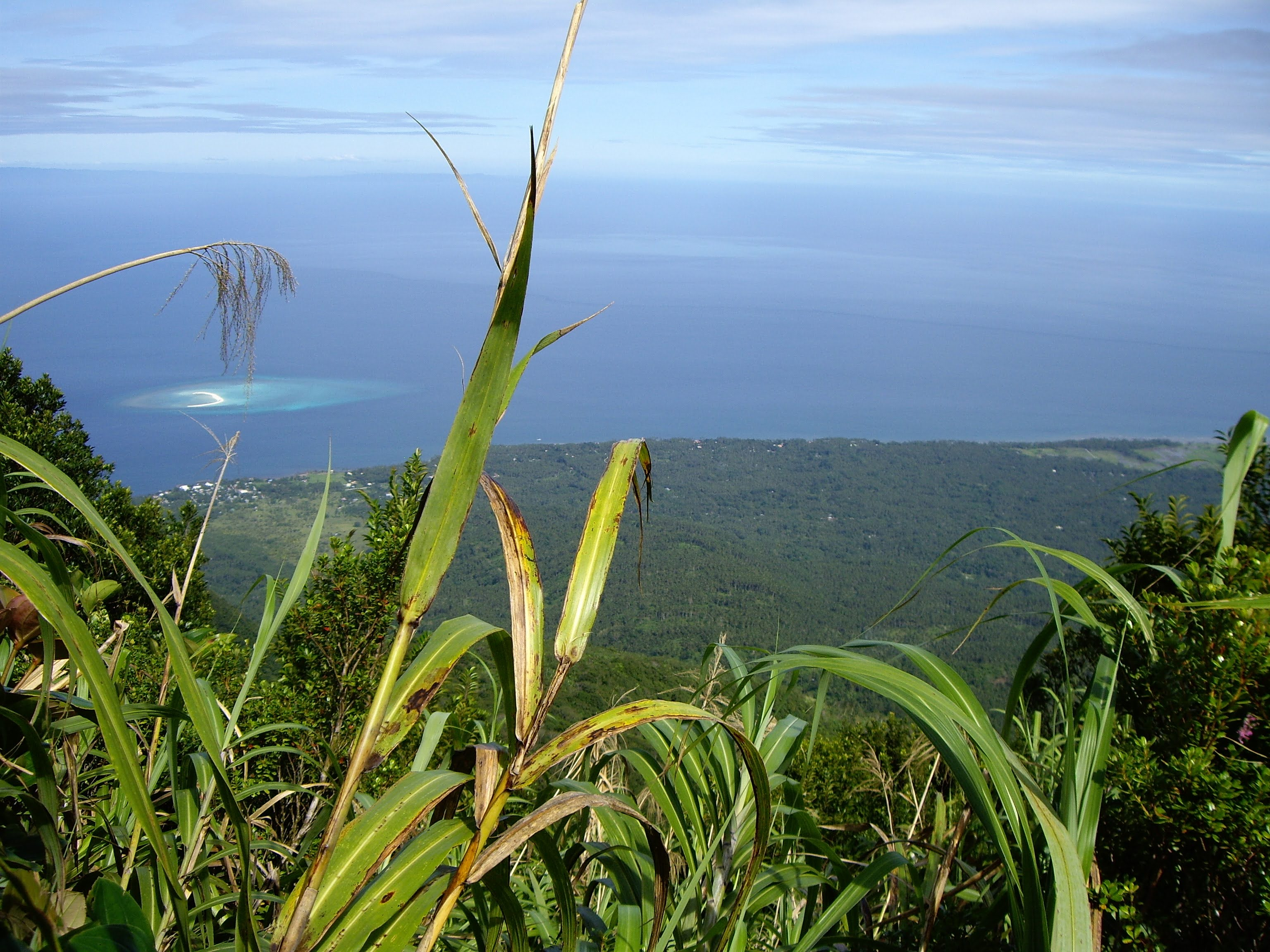 The view from the mountain look down to the ocean of Camiguin Island and that white little thingy is the White Island, Mantigue Island