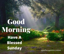 good morning wishes for sunday