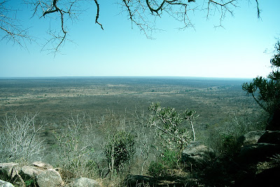 Kruger National Park, landscape, South Africa, safari