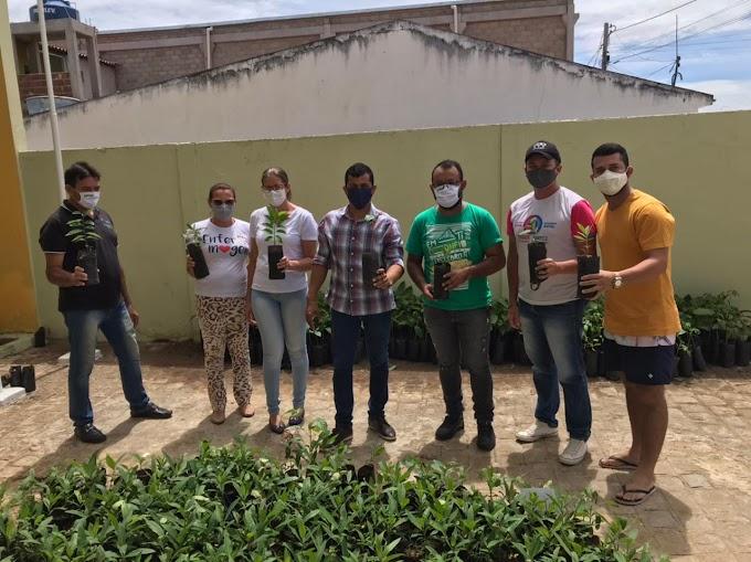 Prefeitura de Amparo realizou doação de mudas para população