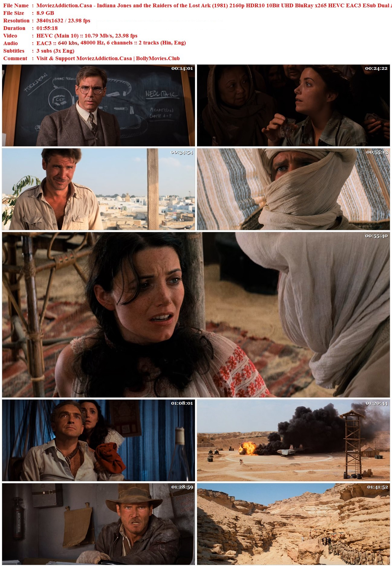 Download Indiana Jones and the Raiders of the Lost Ark
