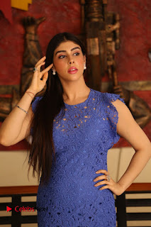 Actress Aditi Singh Pictures in Short Dress at Movie Interview 0026