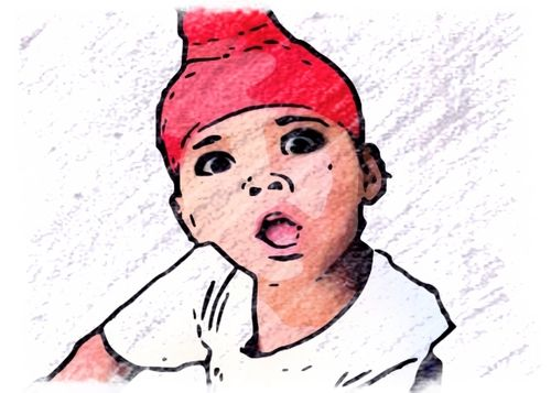 TikTok Star Noor little sardarji, Biography