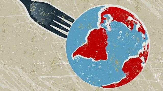 Bagaimana 11 Diet Populer Mempengaruhi Lingkungan