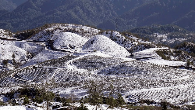 Top destinations for snow lovers in Vietnam 1