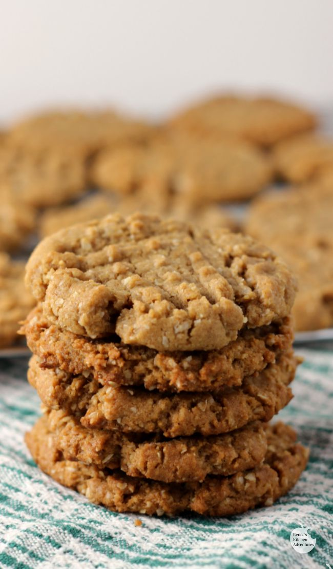 Flourless Peanut Butter Oat Cookies (Vegan, Gluten Free, Dairy Free) | by Renee's Kitchen Adventures - Great recipe for a vegan peanut butter cookie!  So yummy, you won't be able to stop with one!