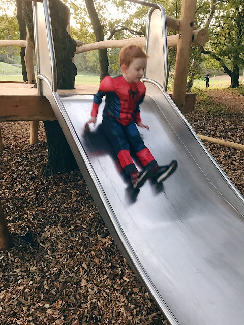Little boy on a slide