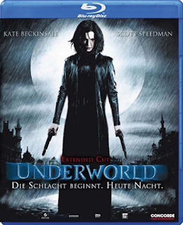 Underworld 2003 [Hindi English] Dual Audio 720p BRRip 1GB