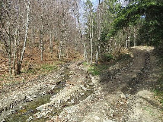 Potok i droga szlaku.