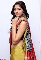 Naziya Khan Model in Saree At Kala Silk Handloom Expo Dec 2017~  Exclusive Galleries 002.jpg