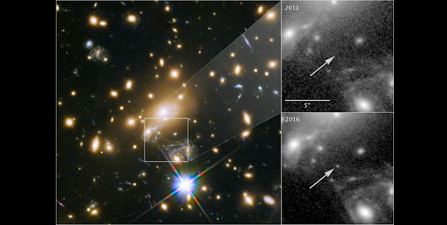 This image composite shows the discovery of the most distant known star using the NASA/ESA Hubble Space Telescope.  The image to the left shows a part of the the deep-field observation of the galaxy cluster MACS J1149.5+2223 from the Frontier Fields programme gathered in 2014. The square indicates the position where the star appeared in May 2016 — its image magnified by gravitational microlensing. This part of the image also shows the four images of the Refsdal supernova, arranged in an Einstein cross.  The upper right image pinpoints the position of the star, observed in 2011.  The lower right image shows where the star was undergoing the microlensing event in late May 2016.  Credit: NASA & ESA and P. Kelly (University of California, Berkeley)