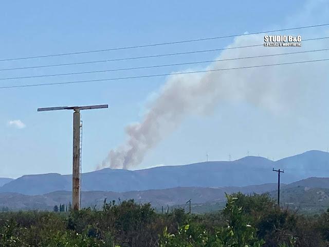 Αργολίδα: Πυρκαγιά εκδηλώθηκε στο Αραχναίο