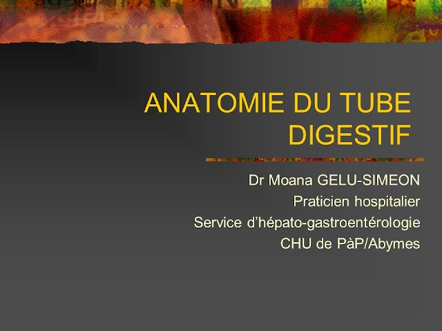 ANATOMIE DU TUBE DIGESTIF .pdf