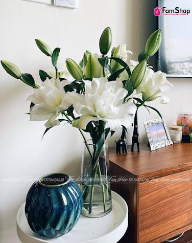 Hoa ly kép trắng Anouska