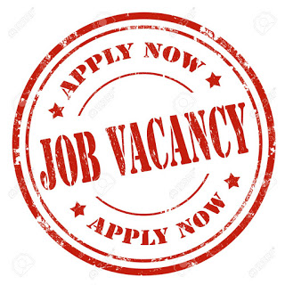 Elevantix Consulting Limited Regional Sales Manager Job Vacancy 2018
