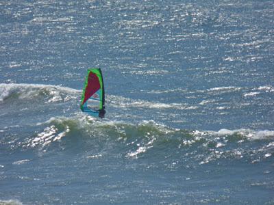 Sailsurfing Pistol River