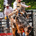 NORFOLK RAM RODEO CELEBRATES 5 YEARS ON JULY 18-19,2020