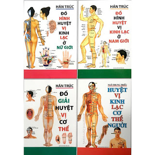 Huyệt vị kinh lạc cơ thể người ebook AWZ3/EPUB/PDF/PRC/MOBI