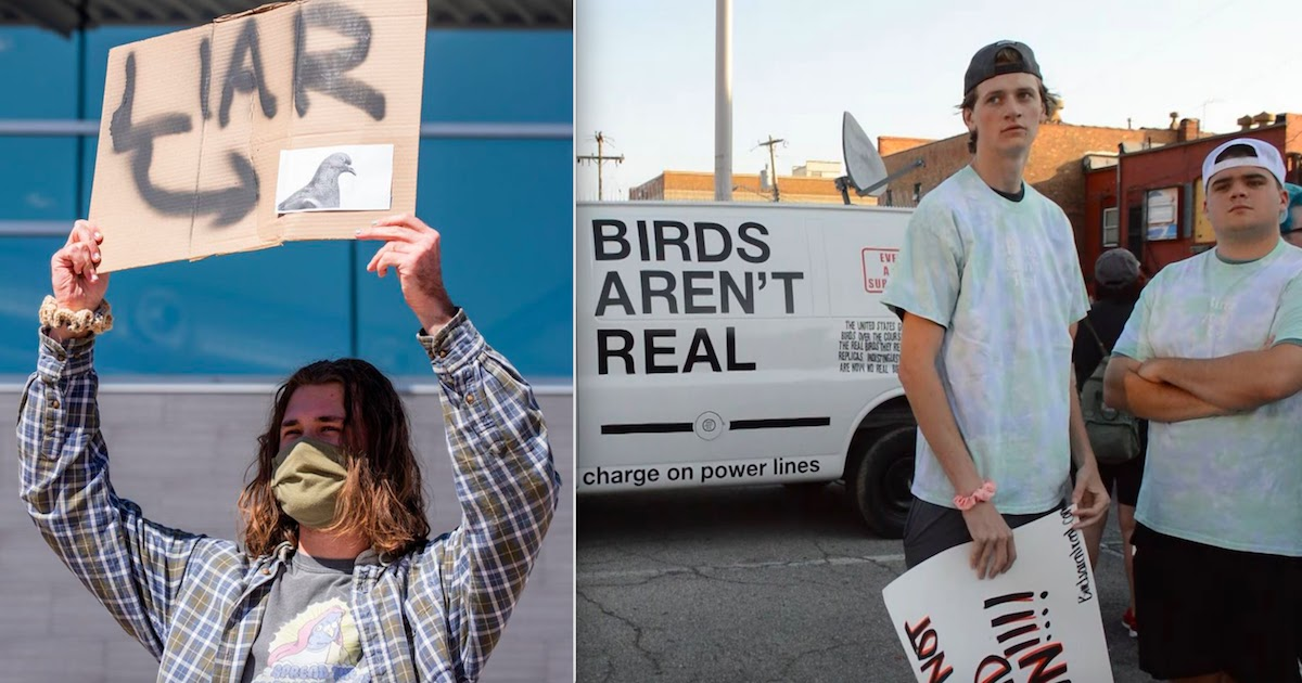 'Birds Aren't Real' Conspiracy Group Hold Protest To Rally People To Their Cause