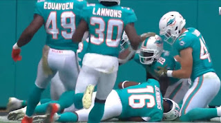 Dolphins nfl picture
