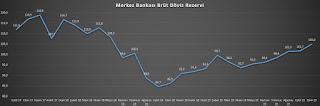 merkez bankası brüt döviz rezervi kasım 2019