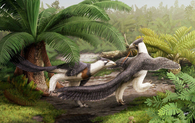 Bird-like dinosaur is oldest unearthed in North America