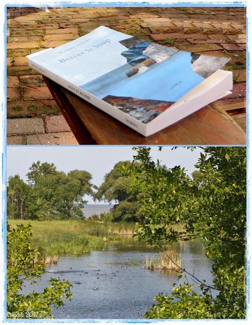 Sanctuaire d'oiseaux aquatiques (des sarcelles ce jour-là), à Montmagny