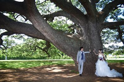 Moanalua Weddings