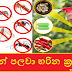 කෘමින් පලවා හරින ක්රම 8ක් (Eight Methods Of Insect Removal)