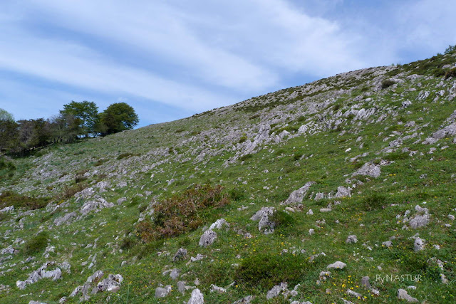 Sierra de Las Aves - Piloña - Asturias