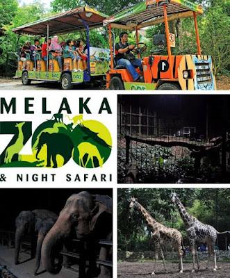 tempat menarik di zoo melaka pada waktu malam