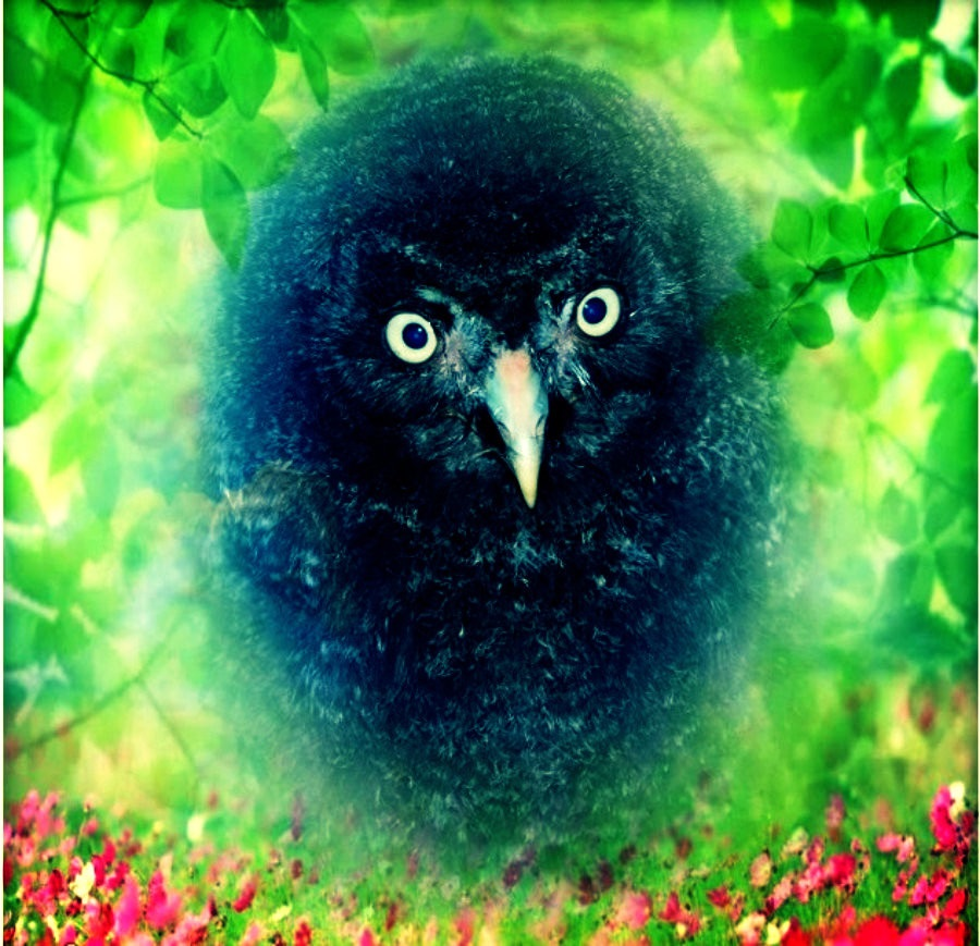 Digital Art Bartkauz 001D Tiere Raubvögel