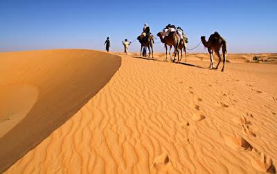 padang sahara Mauritania