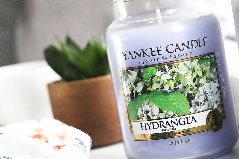 hydrangea yankee candle