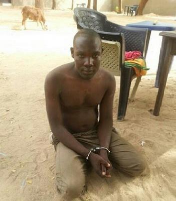 boko haram cell leader arrested