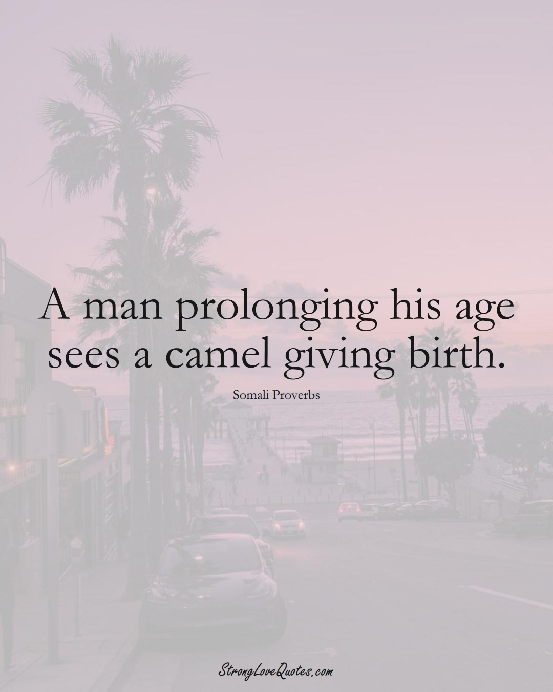 A man prolonging his age sees a camel giving birth. (Somali Sayings);  #AfricanSayings
