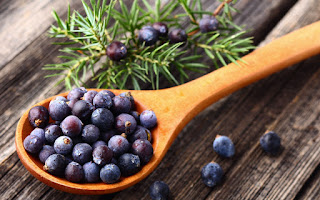 Benefits of Juniper Berry For Skin