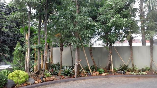 jasa kami membrikan pelayanan yang profesional bergaransi dan kompeten di bidang jasa pembuatan taman kami menyediakan berbagai layanan lansekap dari desain dan bangun lansekap, konstruksi lansekap, hingga arsitektur lansekap murnikami merupakan penyedia jasa layanan pembuatan taman terbaik di jember dan sekitarnya, menyediakan berbagai layanan lansekap dari desain dan bangun lansekap, konstruksi lansekap, hingga arsitektur lansekap, tukang taman jember dengan jasa desain taman terbaik kontak kami di 081233350403