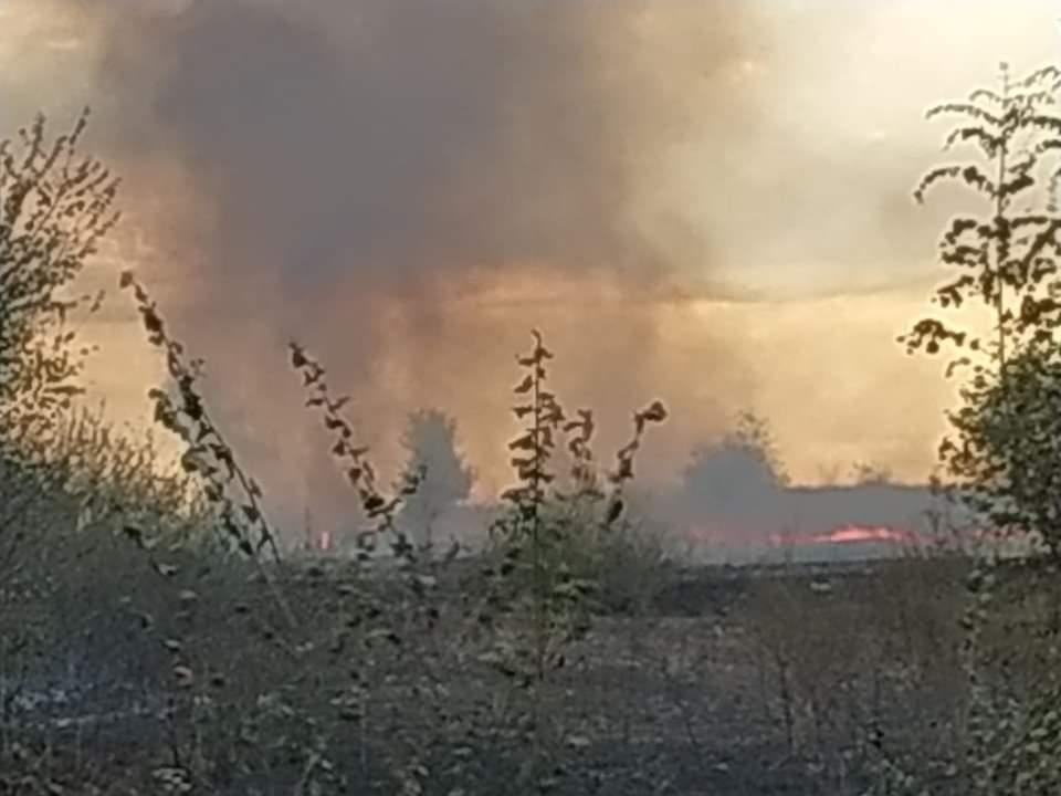 Ξάνθη: Μεγάλη φωτιά στο Βανιάνο κοντά στην Εγνατία - ΦΩΤΟ