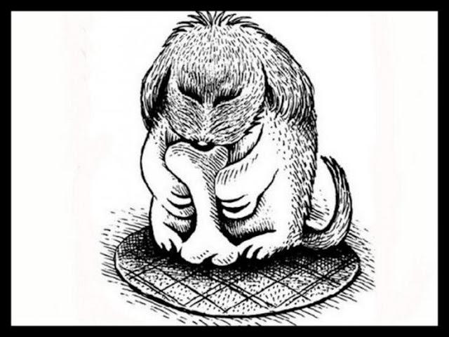 Σκίτσα με ζώα: Η μεγάλη αποκάλυψη