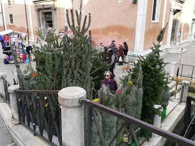 Ponte di San Felice, Strada Nuova, Venezia: la vendita degli alberi di Natale